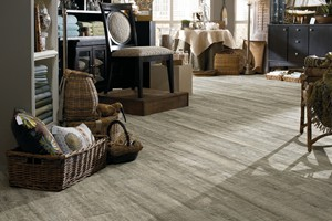 Nantucket Oak